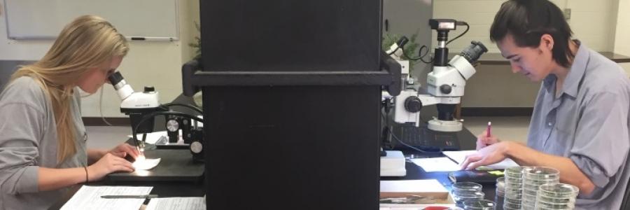 Simberloff Lab UndergradsCrop