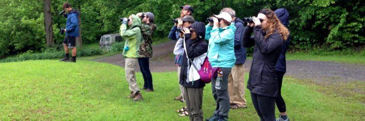 day 2 – birdwatching